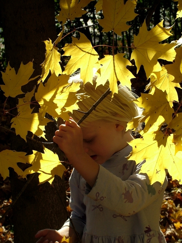Child with fall leaves